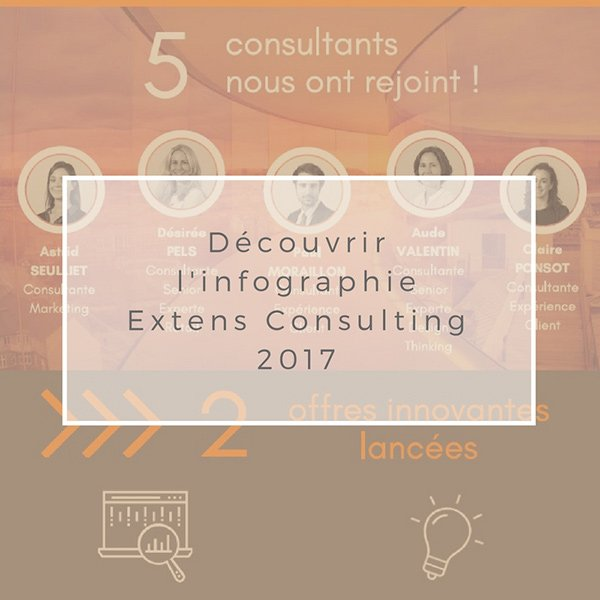 infographie-Extens-Consulting-2017-Relation-Client