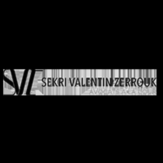 Logo-SVZ-NB